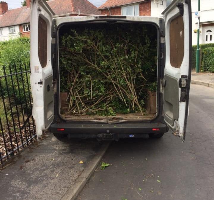 Gardeners in Attleborough Hedge Cutting Trimming