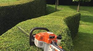 Gardeners in Dereham Hedge Cutting Trimming